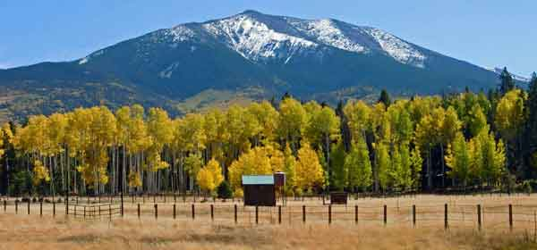 Tours from Flagstaff